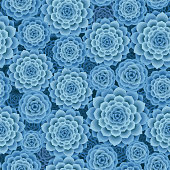 A top view succulent plants seamless pattern in blue color.