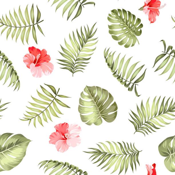topical palm leaves pattern. - hibiskusgarten stock-grafiken, -clipart, -cartoons und -symbole