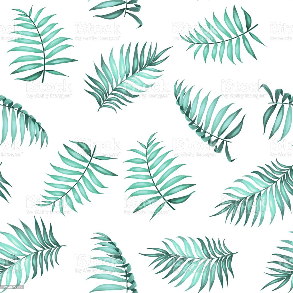 Topical palm leaves pattern stock vector art 594075988 istock ornamental garden palm tree plant summer tropical climate topical palm leaves pattern pronofoot35fo Image collections
