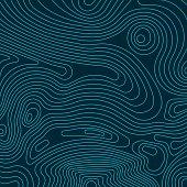 Topographic Lines