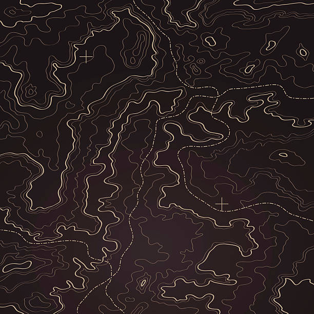ilustrações de stock, clip art, desenhos animados e ícones de topographic fundo do mapa - comportamento animal