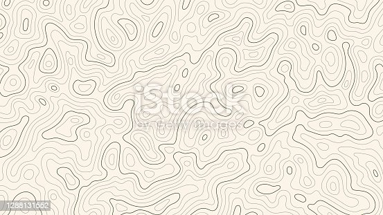 istock Topographic map patterns, topography line map. Vintage outdoors style 1288131552