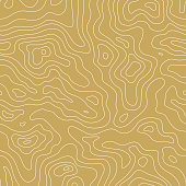 Topographic Map Seamless Golden Pattern. Vector Background