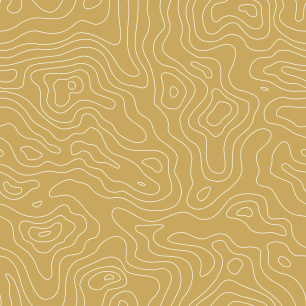 Topographic Map Seamless Golden Pattern. Vector Background Topographic Map Seamless Golden Pattern. Vector Background topography stock illustrations