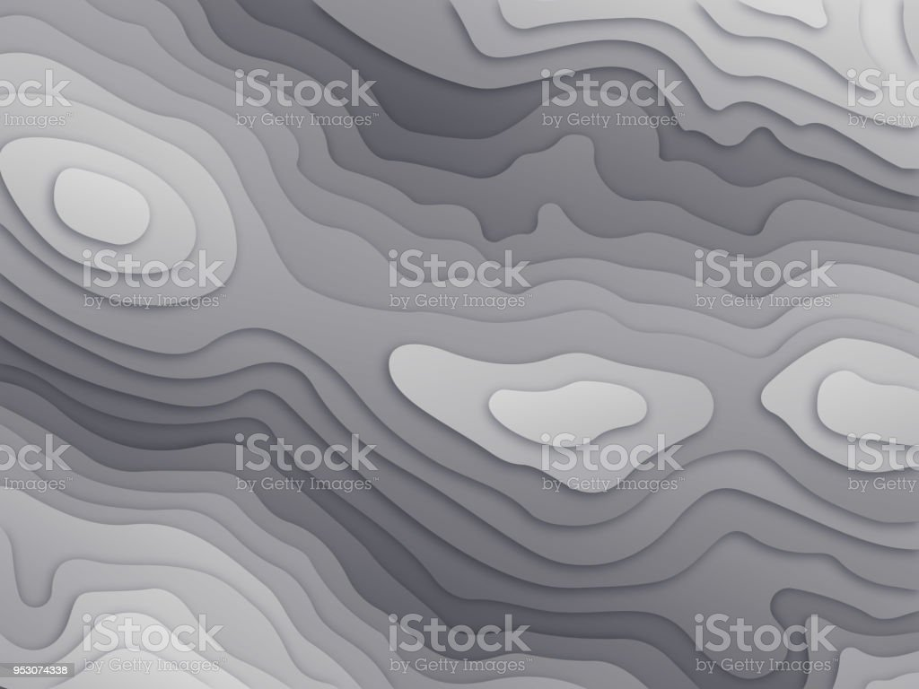 Topographic Relief Map