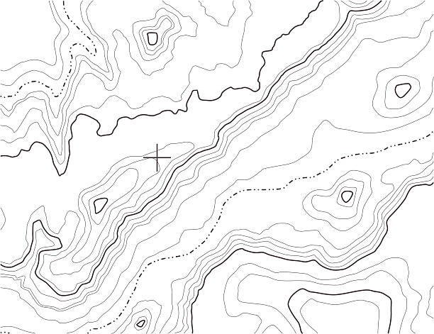 Topography Background [vector] A topographic map pattern on white. topography stock illustrations