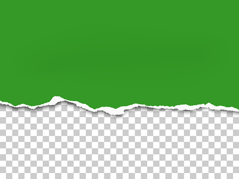 Torn a half sheet of green paper from the bottom. Vector template paper design.