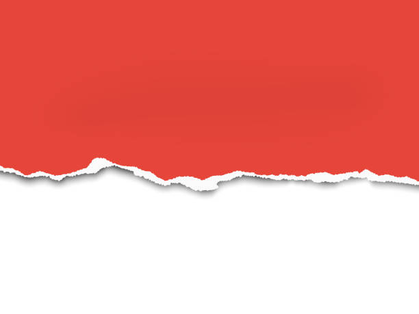 ein halbes blatt rotes papier von unten torten. vector schablone papier design. weißer hintergrund darunter. - zerrissen stock-grafiken, -clipart, -cartoons und -symbole