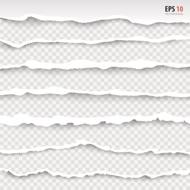 Torn paper edges, horizontally, vector. Realistic torn paper. Torn page banner. vector art illustration