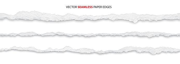 torn paper edges, vector
