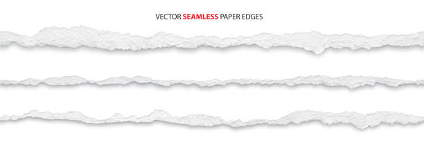 torn paper edges, vector realistic torn paper edges, vector illustration paper stock illustrations