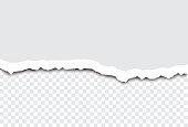 istock Torn Paper Vector 1213492370