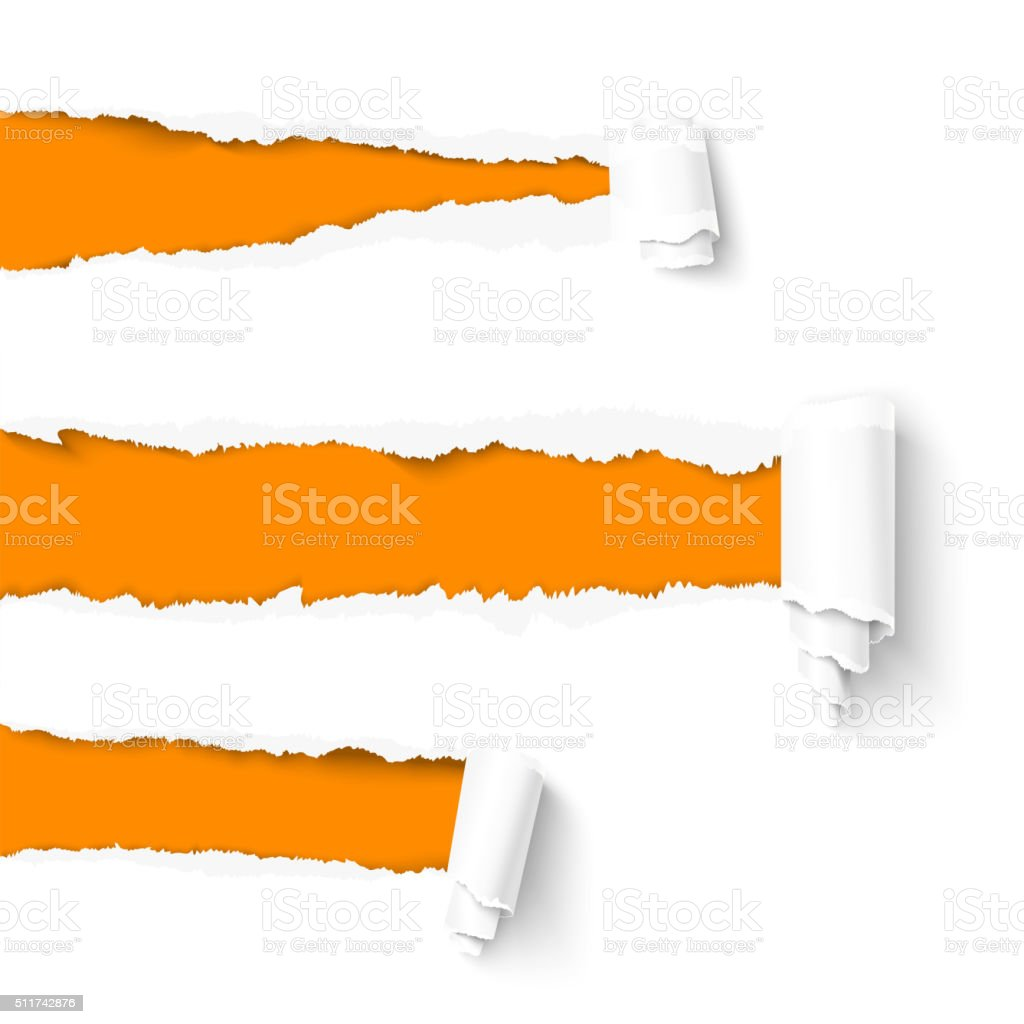 Torn paper with a scroll vector art illustration