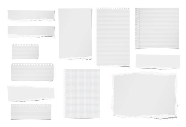 torn ruled and blank note, notebook, paper strips, sheets for tex or message stuck on white background. - lined paper stock illustrations