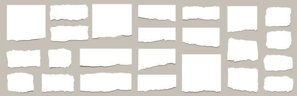 ilustrações, clipart, desenhos animados e ícones de folhas rasgadas de papel. conjunto de tiras de papel rasgadas. ilustração vetorial - papel
