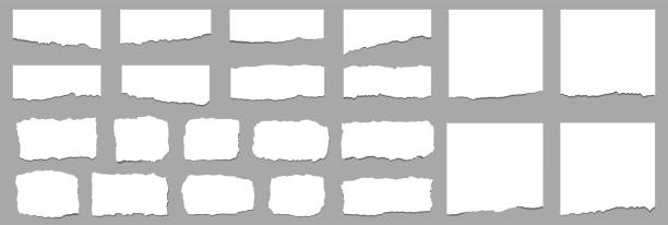 ilustrações, clipart, desenhos animados e ícones de folhas de papel rasgadas. tiras de papel rasgadas. vetor - papel