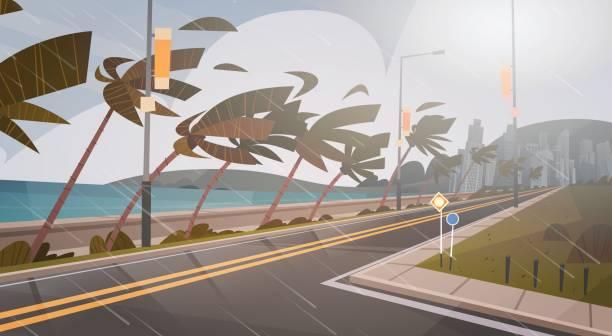 ilustraciones, imágenes clip art, dibujos animados e iconos de stock de tornado entrante de mar huracán viento enorme océano sobre palmeras y camino tropical desastres naturales concepto - hurricane