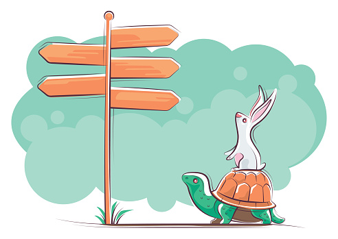 tortoise and rabbit finding direction