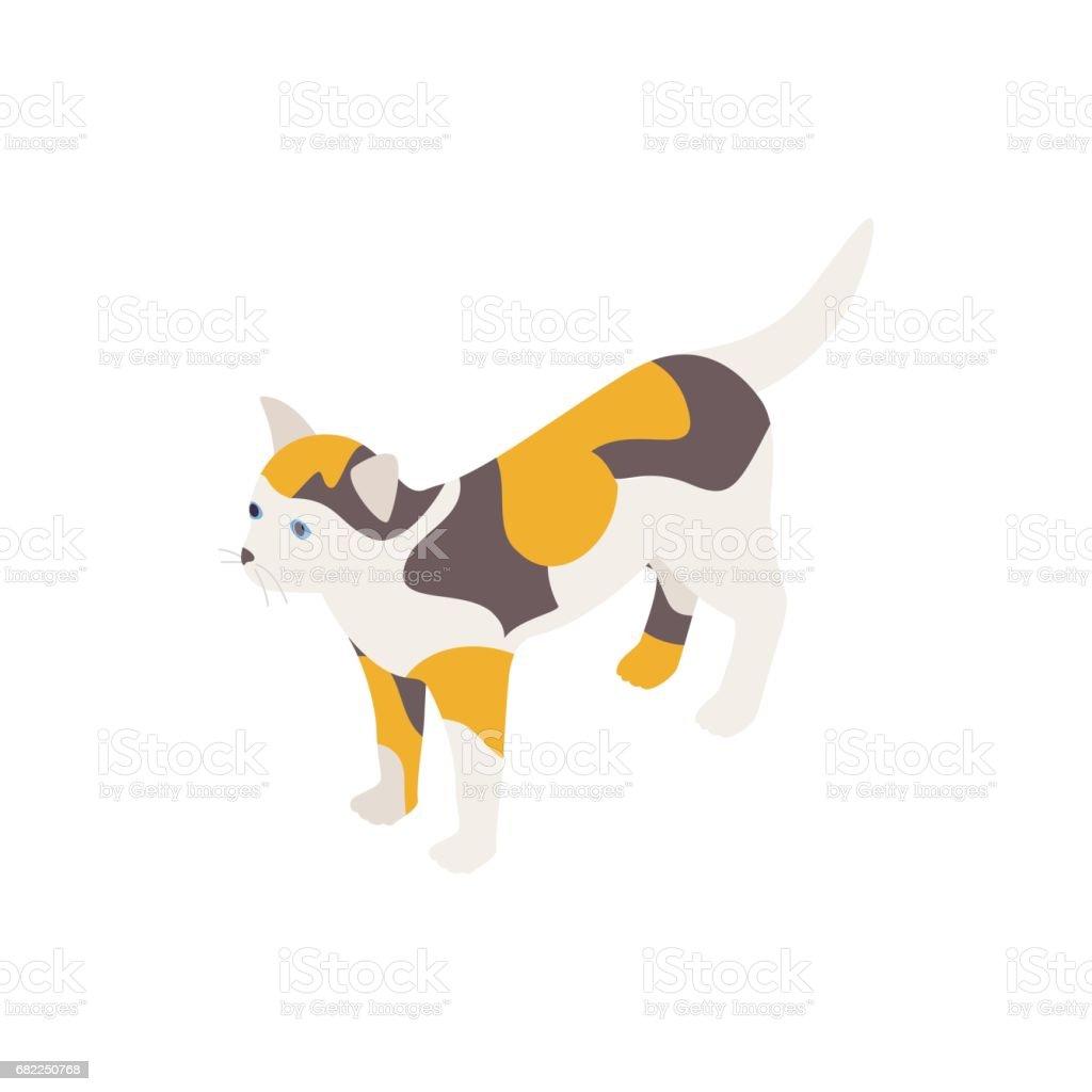 Tortoiseshell cat icon, isometric 3d style vector art illustration