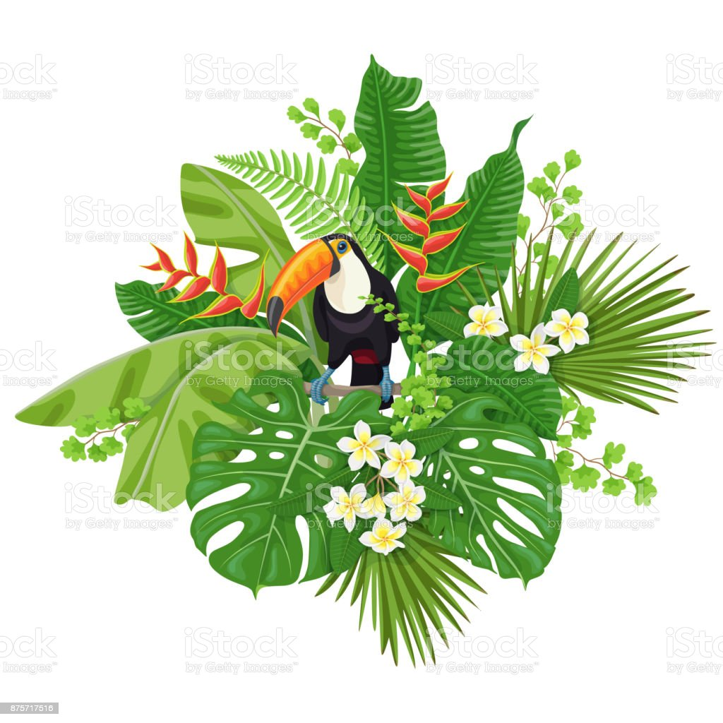 Tucano e plantas tropicais - ilustração de arte em vetor