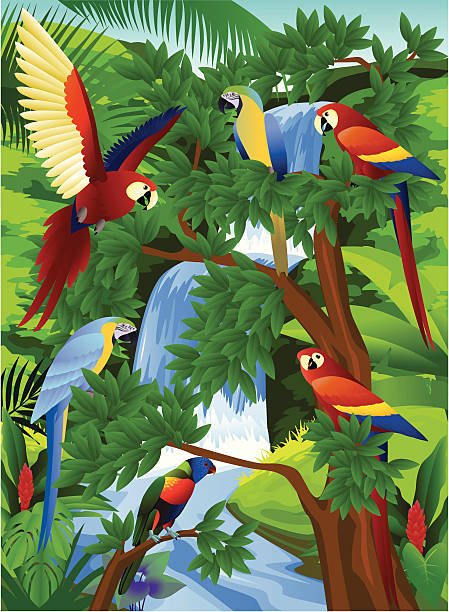 Toucan bird in the tropical jungle Vector illustration of Toucan bird in the tropical jungle exotic animals stock illustrations
