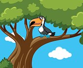 Toucan bird stands on branch