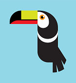 Multicoloured Toucan Bird