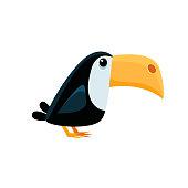 Toucan Funny Illustration