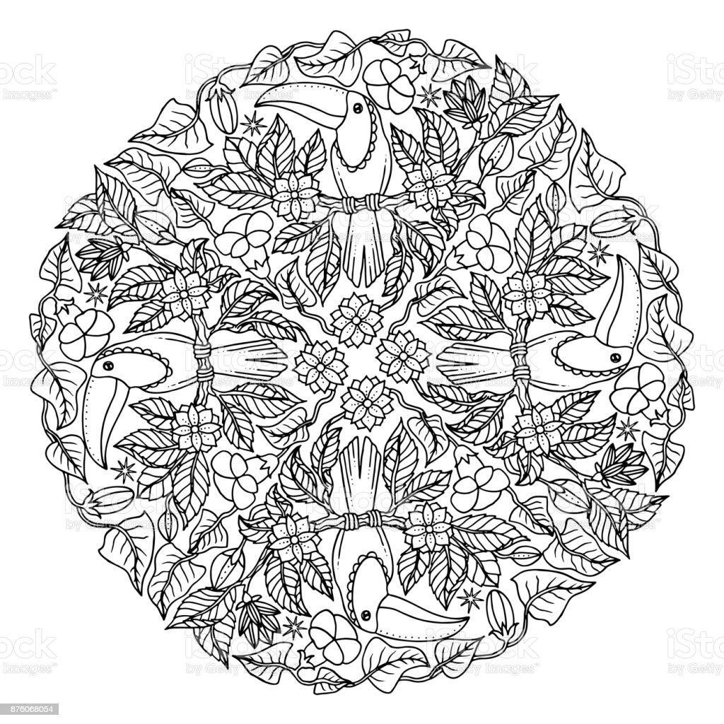 Ornamento De Tucán Para Colorear Página Ilustración De Dibujo De ...