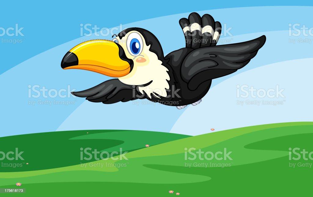 Toucan royalty-free stock vector art