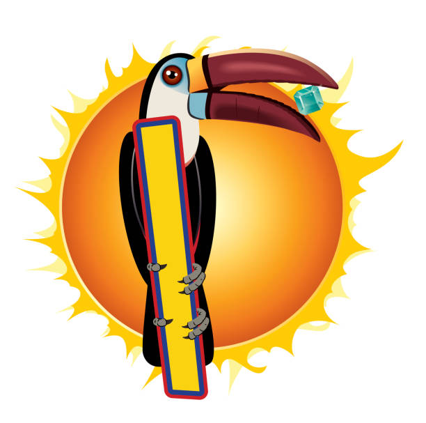 tukan - cartagena stock-grafiken, -clipart, -cartoons und -symbole