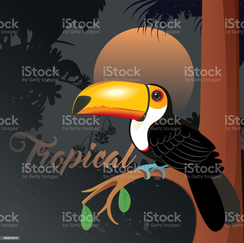 Toucan vector art illustration