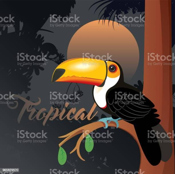 Toucan - Arte vetorial de stock e mais imagens de América do Sul