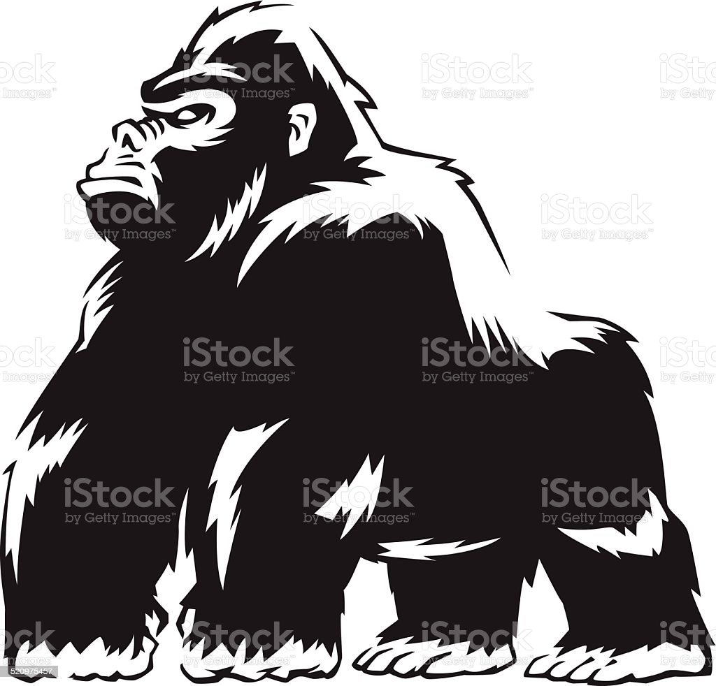 tough gorilla vector art illustration