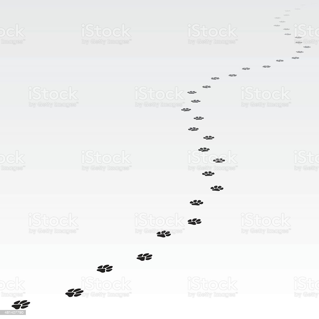 Trace of dog leading far away. vector art illustration