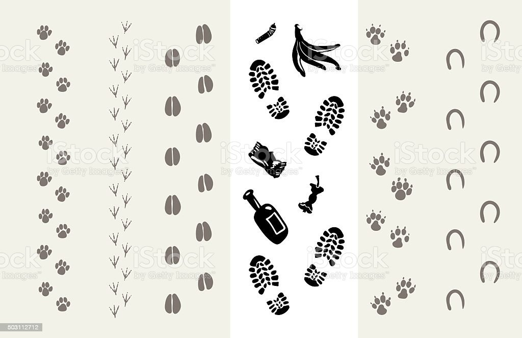Traces of animals and humans vector art illustration