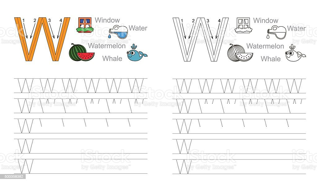 Tracing Worksheet For Letter W stock vector art 500358382 | iStock