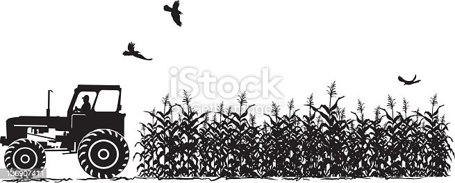 Agriculture Clipart Black And White Tractor And Cor...