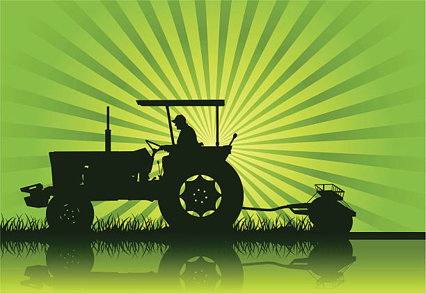 Tractor Silhouette (Vector) A tractor in silhouette on a farm. Hi-res Jpeg included.. one senior man only illustrations stock illustrations