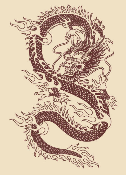 illustrations, cliparts, dessins animés et icônes de illustration vectorielle traditionnelle dragon asiatique - tatouages dragons