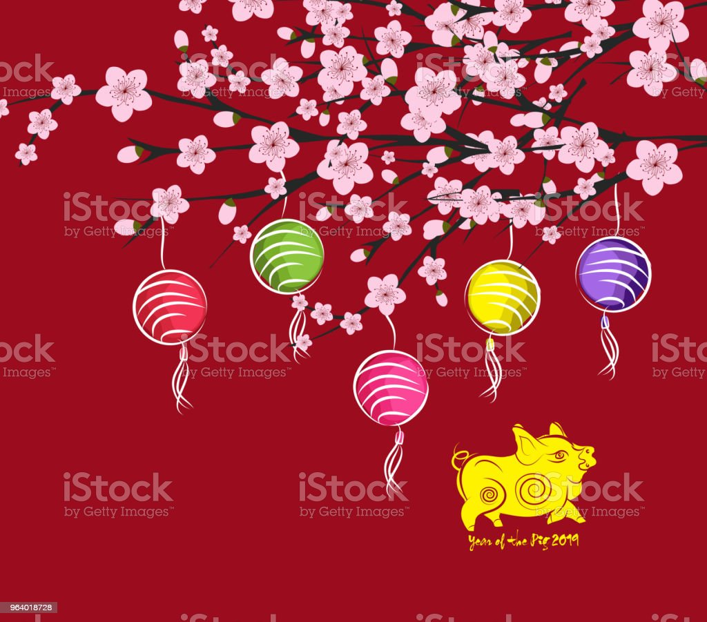 traditional chinese new year. Blossom and lantern background. Year of the pig - Royalty-free 2019 stock vector
