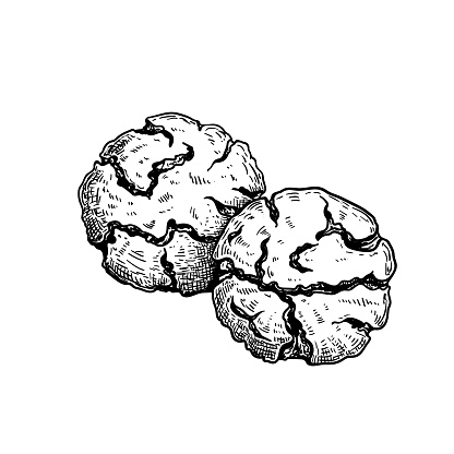 Traditional Italian cookies Amaretti. Hand drawn sketch style drawings. Top view. Vector illustration isolated on white background.