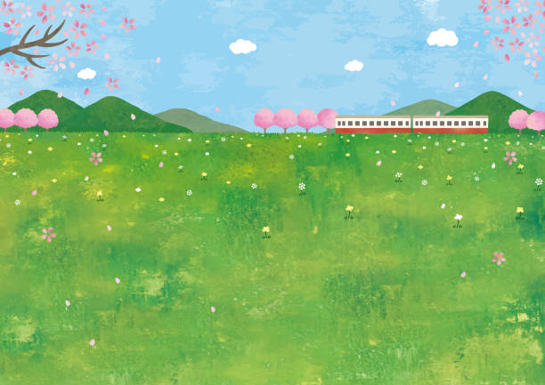 草原での電車と桜 - 草原点のイラスト素材/クリップアート素材/マンガ素材/アイコン素材