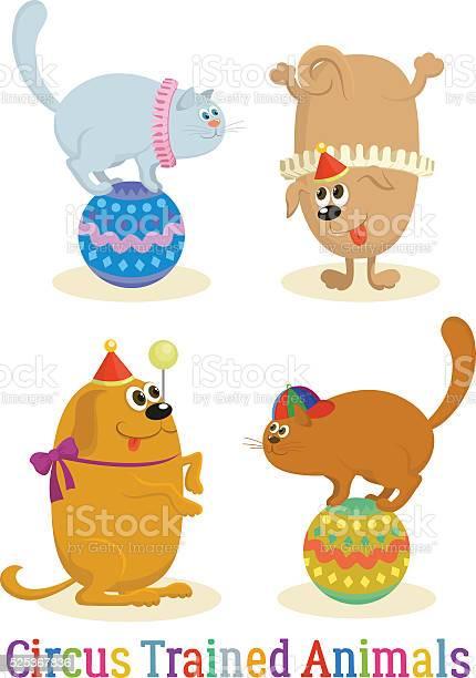 Trained animal dog and cat set vector id525367836?b=1&k=6&m=525367836&s=612x612&h=9tyigm8mpyhaa5rsgzttfc1a4v c3gffircfkgis2jw=