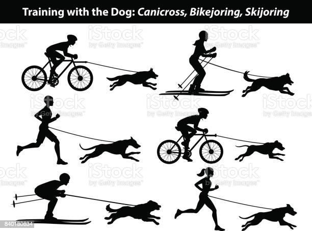 Training exercising with dog canicross bikejoring skijoring set vector id840180834?b=1&k=6&m=840180834&s=612x612&h=ueeek4dhcjk2uytf1 cnj9jevcrmtwwdx 1a56oejyk=