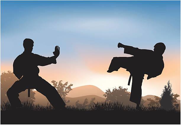 training - taekwondo stock illustrations, clip art, cartoons, & icons