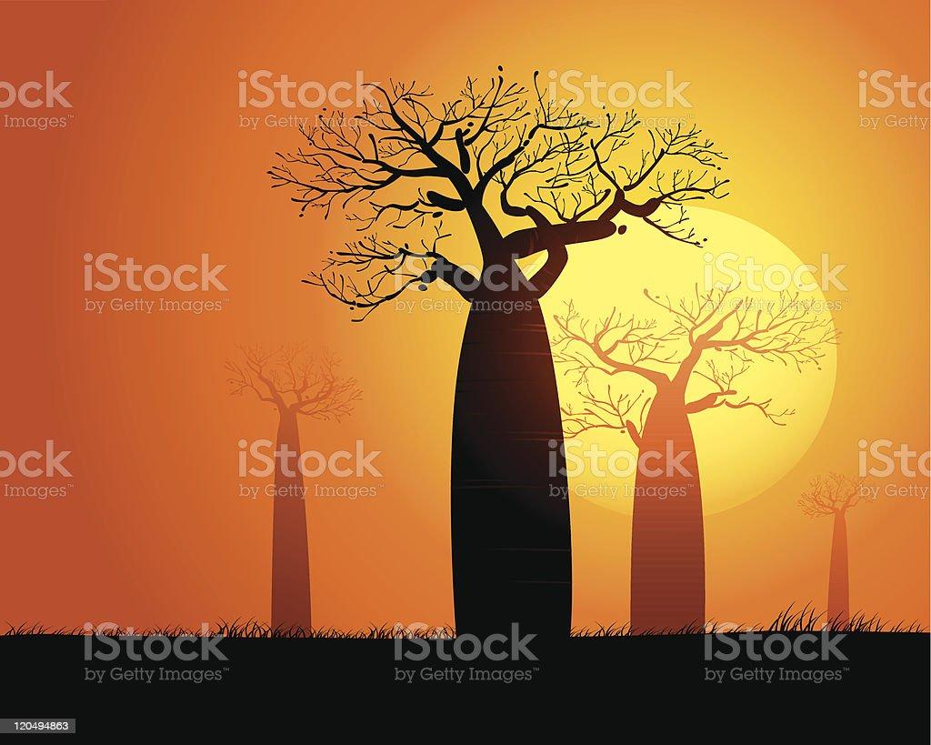 Tranquil sunset scene in Madagascar vector art illustration