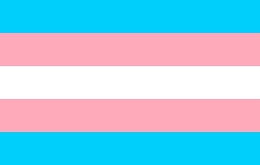 Transgender pride community flag, LGBT symbol. Sexual minorities identity. Vector