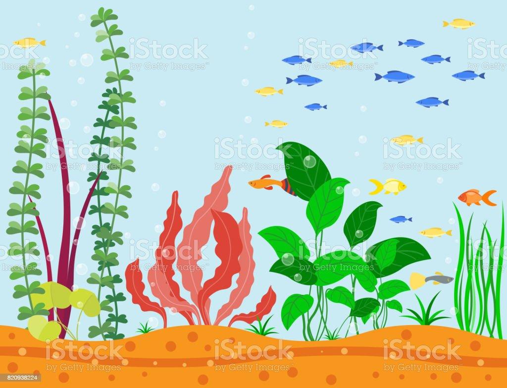 투명 한 수족관 바다 수생 배경 벡터 그림 서식 지 물 탱크 집 수 중 물고기 조류 식물 벡터 아트 일러스트