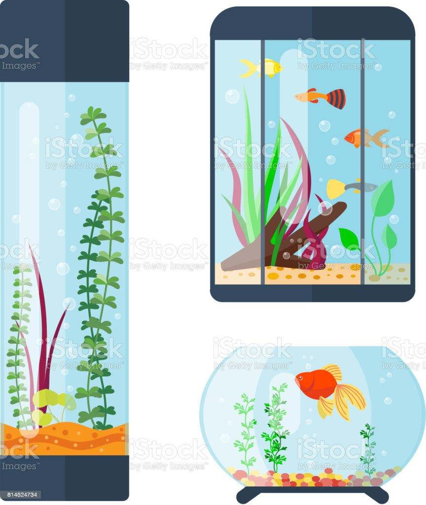 Transparente Aquarium Vektor Illustration Lebensraum Wasser Tank Haus  Unterwasser Aquarium Schüssel Lizenzfreies Transparente Aquarium Vektor  Illustration